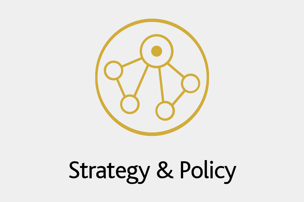 strategy-policy